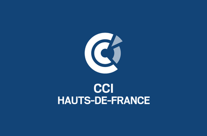 CCI international: Référencement web à l'international.
